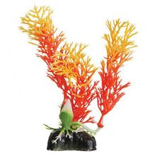 Aquarium Fish Tank Decorations for Freshwater and Saltwater Aquariums Aquarium Decorations, Underwater, Orange, Pets, Under The Water, Animals And Pets
