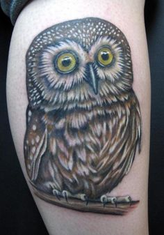 @Brittany Horton Horton here's a cute owl tattoo and it could work as a cover up