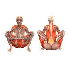 ૐ YOGA ૐ Malasana ૐ . Postura de Guirnalda. Garland pose - Yoga Poses | YOGA.com
