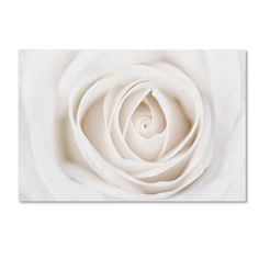 This ready to hang, gallery-wrapped art piece features the delicately overlapping petals of a white rose. Giclee (jee-clay) is an advanced printmaking process for creating high quality fine art reproductions. The attainable excellence that Giclee printmaking affords makes the reproduction virtually indistinguishable from the original piece. The result is wide acceptance of Giclee by galleries, museums, and private collectors.