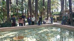 #alicanteexperience  #spanishcourses #incomingua #erasmusua #cursosespañolua #disfrutayaprende #studyabroad #enjoyandlearn #costablanca #alicante #campusua #learnspanish #ELE #japon