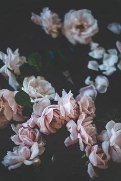 Bye Bye Roses | Christina Greve | Bloglovin'