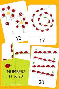 Number Flash Cards 11 - 20 - Mr Printables
