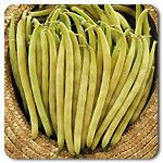 Organic Gold Rush Yellow Wax Bean