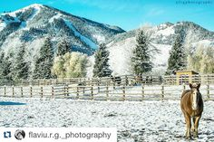 #Repost @flaviu.r.g._photography with @repostapp Get featured by tagging your post with #talestreet Two more weeks before Sun ValleyID ski resort it will open the season ski of 2015-2016. Very excited !!! #sunvalley#visitsunvalley#seeksunvalley#bestofsunvalley#skiresort#skimountain#sunvalleyphotographer#idaho#idahome#idahogram#idahodaily#ig_idaho#bestofidaho#snow#winter2015 #outdooridaho#face_of_the_earth#winter#ski#talestreet#twitter #travel#explore#nikon#nikon_usa.  Photo by: Flaviu…