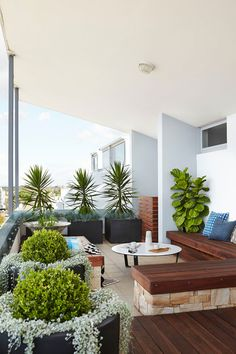 Tips For Building A Balcony Garden In Your Apartment4