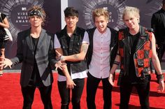 Calum Hood, Michael Clifford, Luke Hemmings and Ashton Irwin of 5 Seconds Of Summer arrive at the 2014 MTV Video Music Awards at The Forum on August 24, 2014 in Inglewood, California.