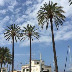 Portixol Club Nautic - Palma -Mallorca