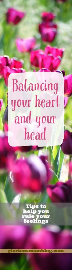 Balancing your heart and your head: tips for managing your emotions and achieving emotional balance. Read about it at the blog: gloriousmomblog.com.