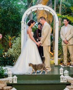 Unexpected Animal Wedding Photos | Vitalic Photo | Blog.TheKnot.com