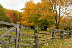 Country Fences, Rustic Fence, Horse Fencing, Garden Fencing, Diy Fence, Fence Ideas, Farm Fence, Yard Ideas, Portland
