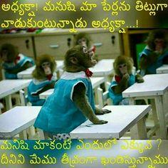 Telugu Jokes, Best Quotes, Fun Quotes, Funny Jokes, Quotations, Facts, Comics, Cherry, Facebook