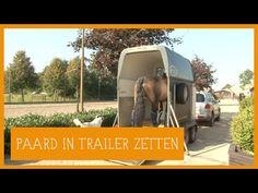 Paard in trailer zetten | PaardenpraatTV - YouTube