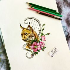 Lynxrose#jdtattoostudio #tattoo #рысь #lynx #dogrose #шиповник #эскиз #акварель #watercolor #aquarelle #sketch #jd #тату #татуировка