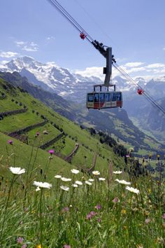 Optimized 10 Best Switzerland Mountain Adventurous