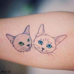 Cabezas de gato! - http://ift.tt/2arflYR