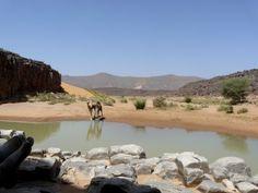 Point d'eau, Sahara Algérie Photo by Decozar2