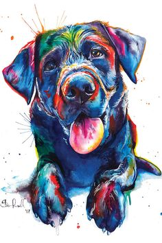 Mind Blowing Facts About Labrador Retrievers And Ideas. Amazing Facts About Labrador Retrievers And Ideas. Perro Labrador Retriever, Labrador Noir, Black Labrador, Canvas Wall Art, Canvas Prints, Art Prints, Watercolor Print, Watercolor Paintings, Dog Paintings