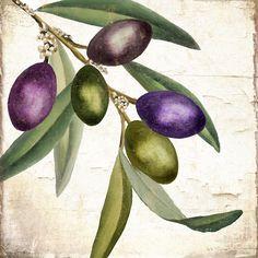 Живопись оливки - Оливковая Ветвь III от Минди Соммерс