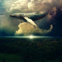 Sam Woods whale in the sky, modern art, digital art