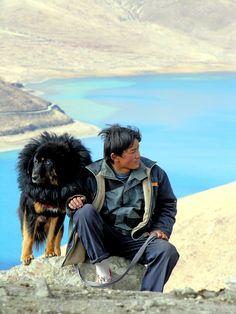 A man and his dog . Tibet