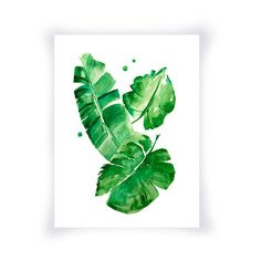 Banana Leaves Watercolor Print, Green Wall Art Home Decor, Green... ($25) ❤ liked on Polyvore featuring home, home decor and wall art