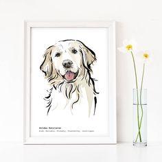 Red Golden Retriever Puppy, Perros Golden Retriever, Golden Retrievers, Retriever Dog, Golden Retriever Gifts, Loro Animal, Handmade Dog Collars, Dog Portraits, Dog Art