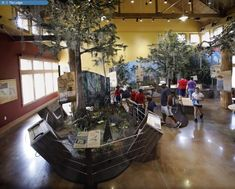 Nature & Wildlife Visitor Centers by Lauren Gisel at Coroflot.com