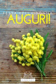 fiori di marzo: mimosa (acacia dealbata) - un giardino in diretta Happy International Women's Day, Acacia, Ladies Day, Happy Day, Happy Birthday, Herbs, Rose, Plants, 8 Martie