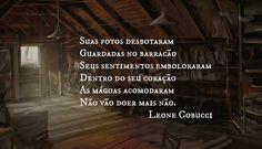 #leonecobucci #semparaquedas #365diascompoesia #adoropoesia #poetryislife