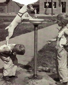 15 Funny Old Pictures of Cute Kids With Their Lovely Pets ~ vintage everyday Vintage Pictures, Old Pictures, Old Photos, I Love Dogs, Puppy Love, Mans Best Friend, Best Friends, True Friends, Friends Forever