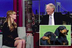 Jennifer Lawrence, of Hunger Games fame, talks about her licking Dashunds on Letterman http://blog.dogvacay.com/jennifer-lawrence-of-hunger-games-talks-daschunds/
