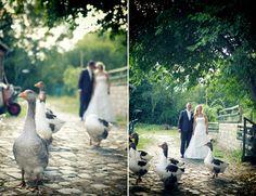 Hochzeit Familienfarm Lübars Hallo Jenny, lieben Dank für die tollen Bilder, sie sind klasse geworden und die Diashow ist auch sehr, sehr schön. Wir möchten uns ganz herzlich für Deine Begleitung an unserem wichtigen Tag bedanken.Du hast es geschafft, Emotionen und Momente einzufangen und auf deinen Fotos festzuhalten. Die... - http://schneeweiss-und-rosenrot.com/hochzeit-familienfarm-luebars/