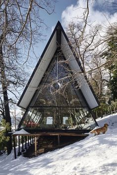 Photo 1 of 16 in Two Prefab Prisms Form an A-Frame Retreat in the Chilean Wilderness - Dwell Bungalows, Cabin Design, House Design, Design Design, Grid Architecture, Sustainable Architecture, Prefab Buildings, A Frame House Plans, Glass Facades