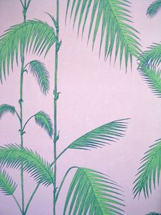 Palm wallpaper by cole & Son, J.R.