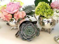 silver/ succulents