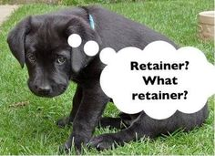 You must take good care of your retainers when they are issued at the end of treatment! Remember... It's the only thing that keeps them straight and saves you from going through treatment all over again! Keep them safe and away from pets in the home!
