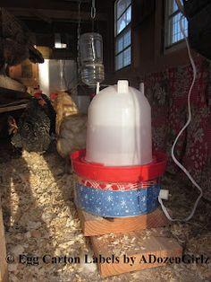 DIY chicken waterer heater. Under $10, & 10 minutes in 3 steps!