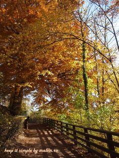 """Fiecare om trebuie sa isi gaseasca timp, sa se aseze si sa priveasca caderea frunzelor""(Elizabeth Lawrence)…sau sa deguste merele zemoase si vinul aromat, sa priveasca stropii d…"