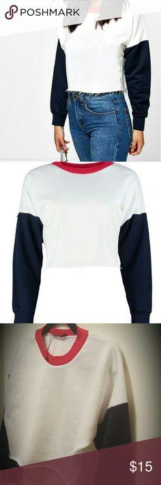 Crop top sweater Never worn Crop top shredded hem sweater Boohoo Petite Tops Crop Tops