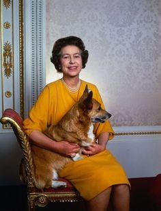 Queen Elizabeth II and one of her Corgis