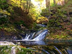 """""""Fall might be the best time for exploration. Cool temperatures, but not too cold! No bugs, beautiful colors, sunny days. #TheRoundHearth #foliage #rivers…"""" Sterling River Gorge"""