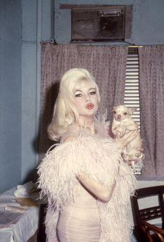 "jayne-mansfields:  "" ""Jayne Mansfield at The Latin Quarter in 1966. "" """