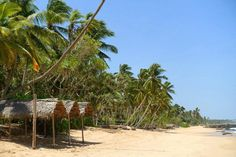 Picture of medaketiya beach in tangalle taken on our 3 week sri lanka route