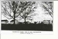 Elmwood Plantation 1919