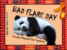 I feel you little panda dude. Bad Flare Day. Complex Regional Pain Syndrome....how cute