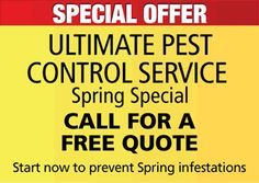 Remember To Give Us A Call, 1-800-901-1102 Corkys, We Can Quote You Free Over The Phone On Ultimate Pest Control / Best Protection For Your Home This Summer !!!!!!