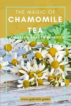 The magic of chamomile tea - Chamomile Health benefits - www.gabriela.green