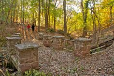 Mill Grove, the home to American naturalist John James Audubon, is a haven for wildlife with a sprawling 175-acres of trails, woods and history. Located just outside Philadelphia in nearby Montgomery County, the woodlands welcome bird and leaf watchers alike. (Photo courtesy John James Audubon Center at Mill Grove)