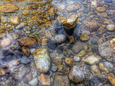 Muestreo ríos con cámaras subacuáticas.